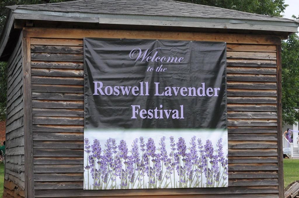 Roswell Lavender Festival