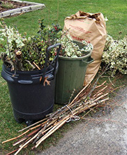 Additional Yard Waste Pick-up