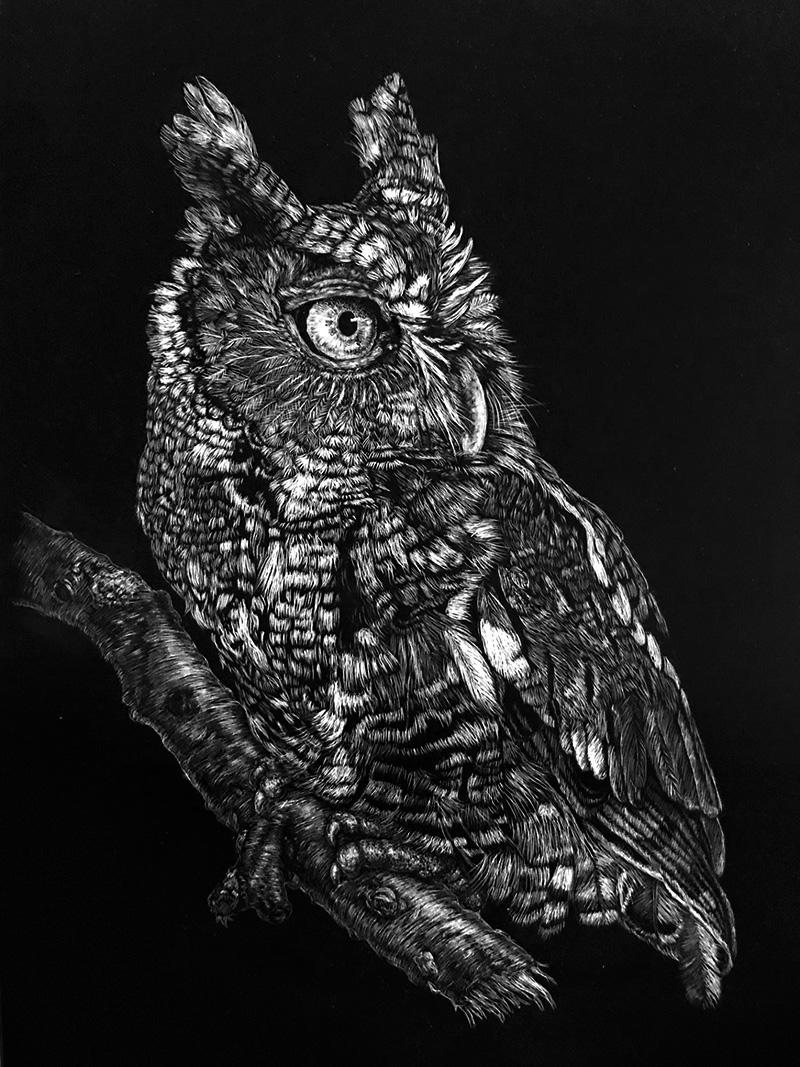 Debra Yaun Owl