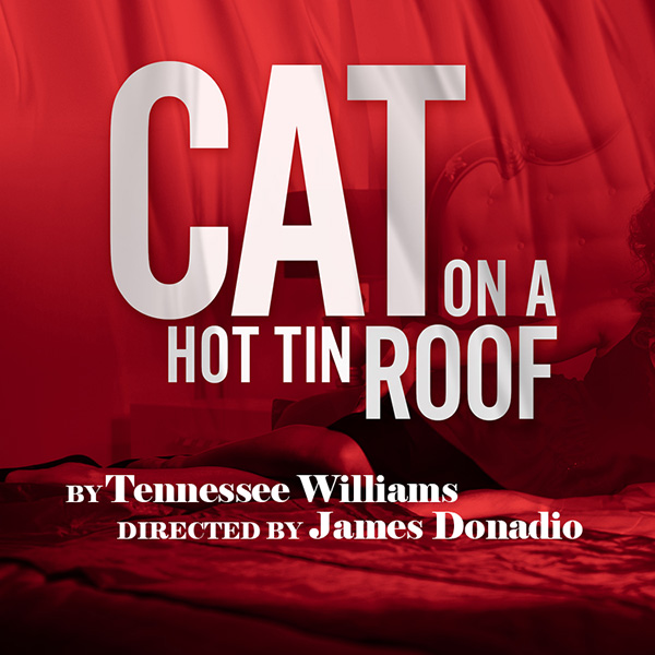 GET Cat on a Hot Tin Roof