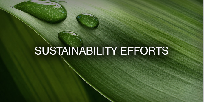 Sustainability Efforts