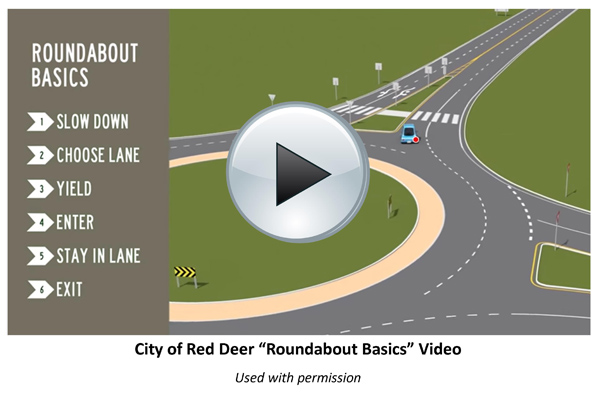 Red Deer Video